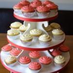 Cupcake Tower and Hubby's Birthday