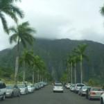Hawaii- Day 7