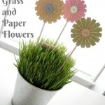Wheat Grass and Paper Flowers