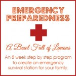 Emergency Preparedness E-book Giveaway