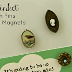 Trinket Push Pins and Magnets