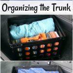 Organizing the Trunk