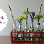 Pop Bottle Centerpiece