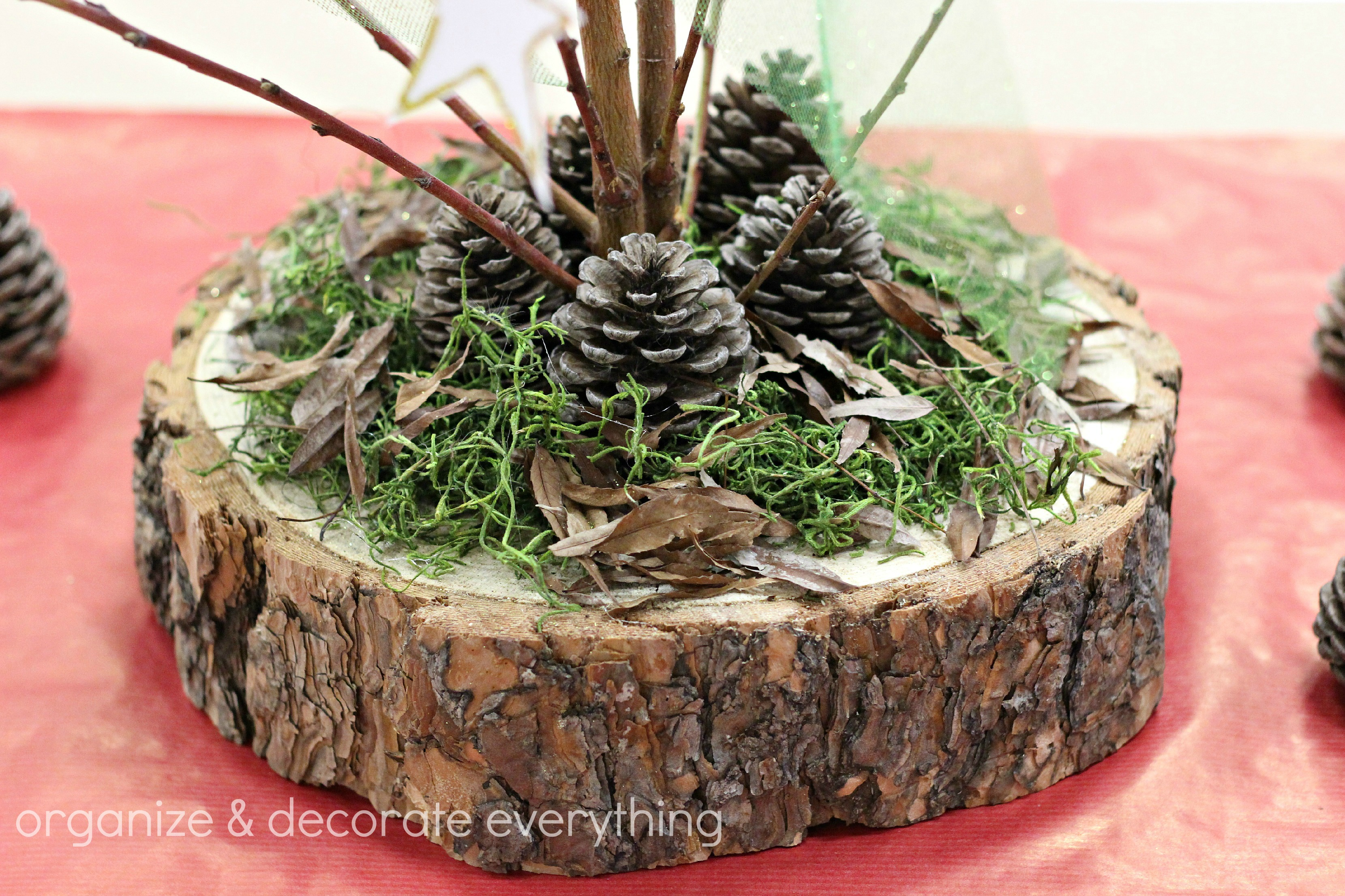 Trunk Slice And Branch Natural Centerpiece 6.1