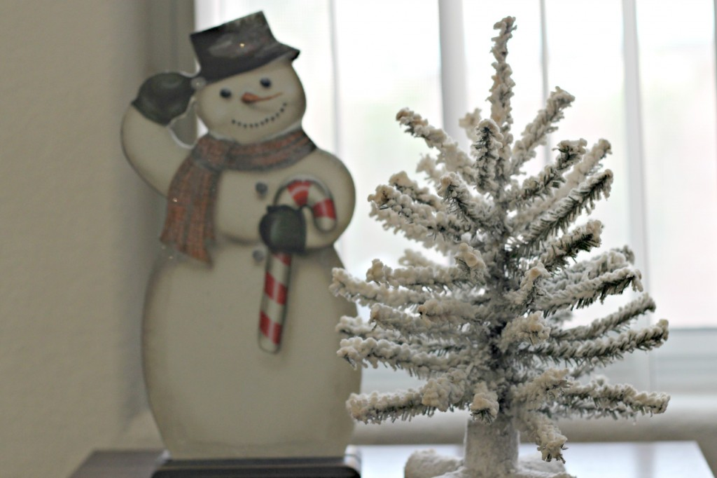 Winter decor 14