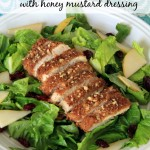 Pecan Crusted Chicken Salad with Honey Mustard Dressing – Food Contributor
