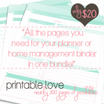 Sneak Peek to Mega Planner Bundle