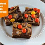 Free Throw Peanut Butter Swirl Fudge