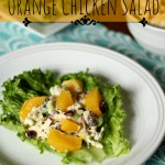 Curried Orange Chicken Salad – Food Contributor