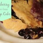 Blueberry Gluten-Free Dump Cake