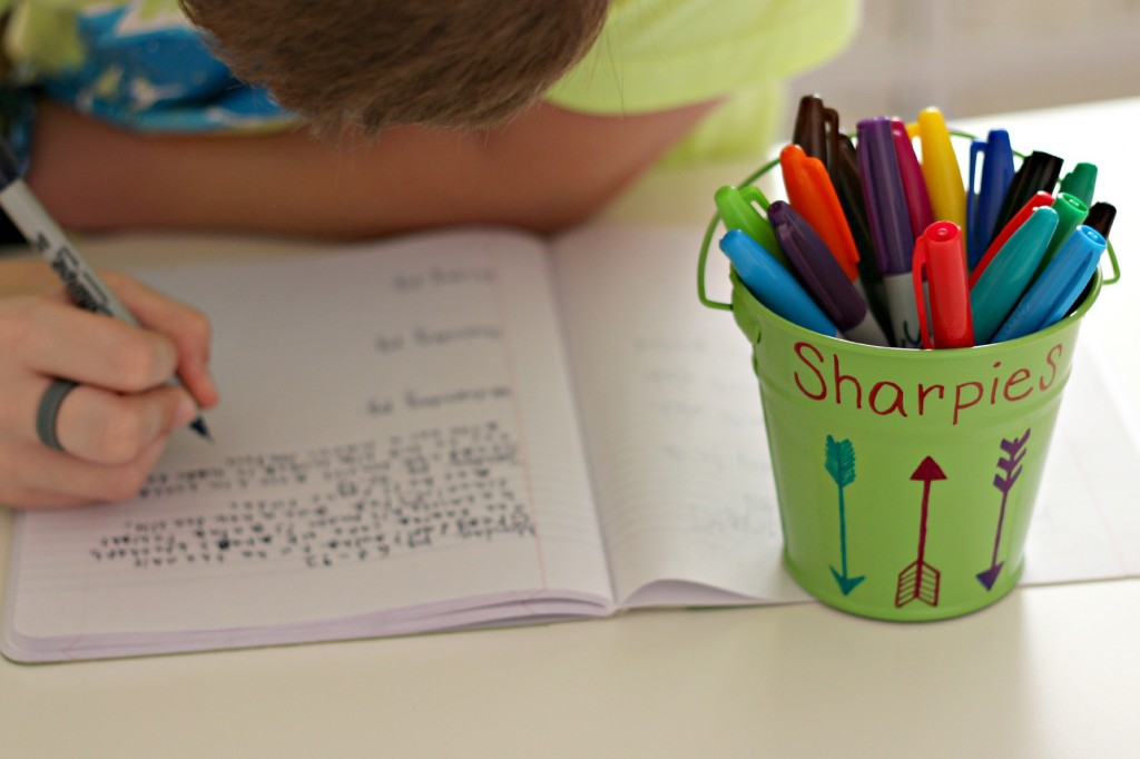 Reading Log Book with Sharpie 4