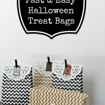 Fast and Easy Halloween Treat Bags