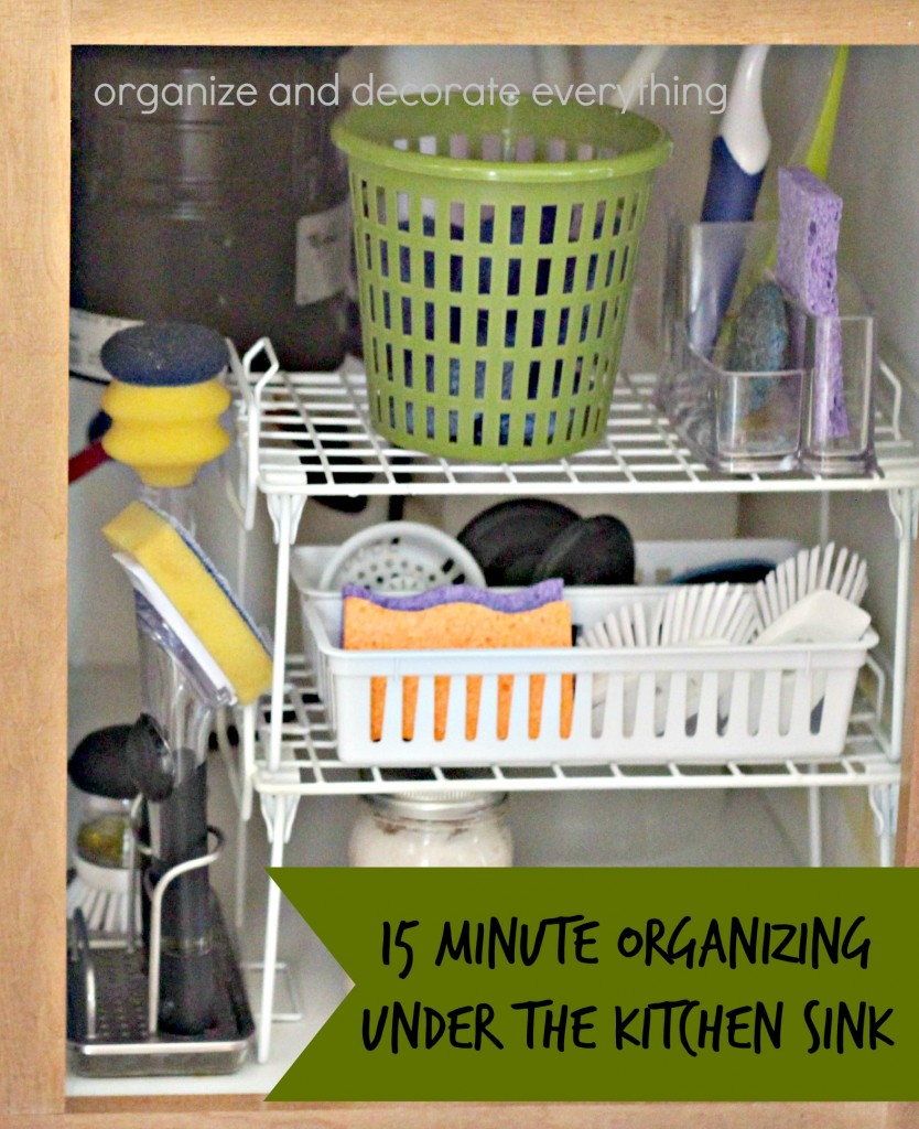 15 Minute Organizing Under the Kitchen Sink