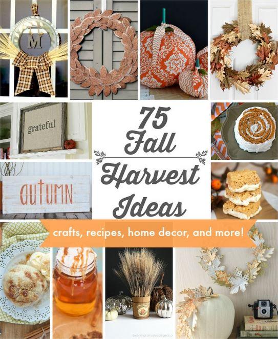 Fall Harvest Ideas