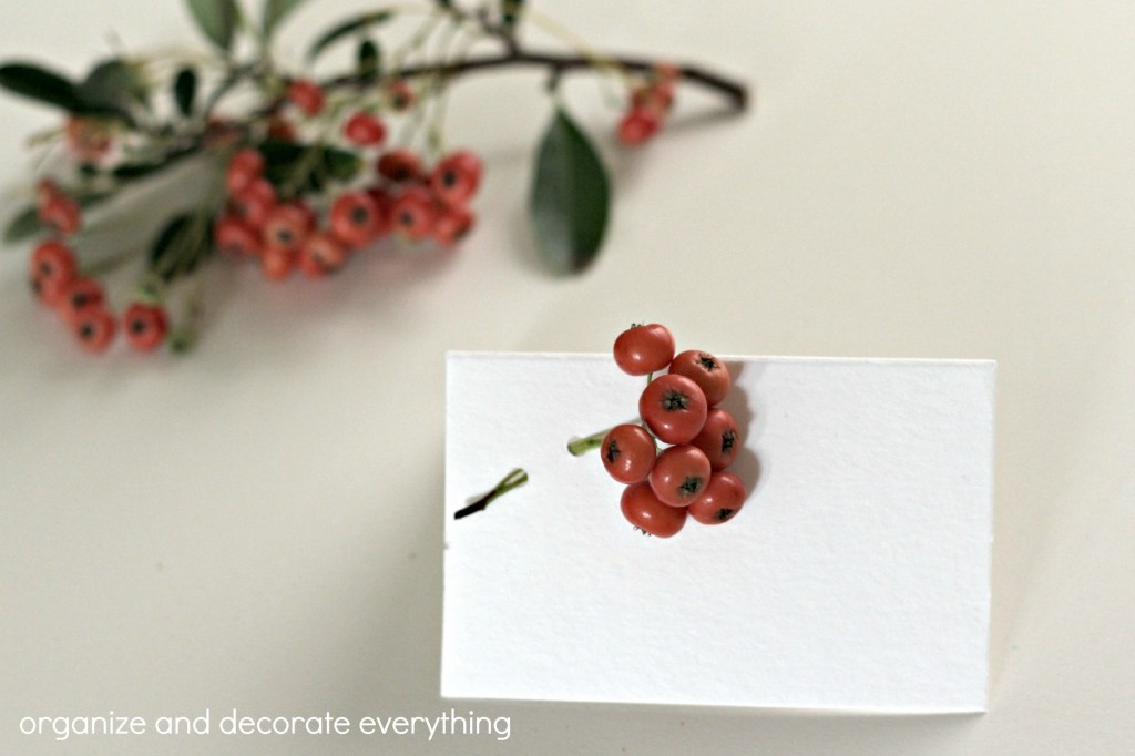 Berry Place Cards 5.1
