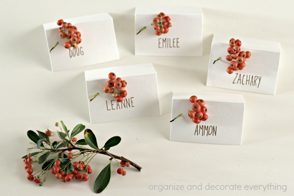 Berry Place Cards 6.1