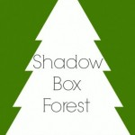 Shadow Box Forest