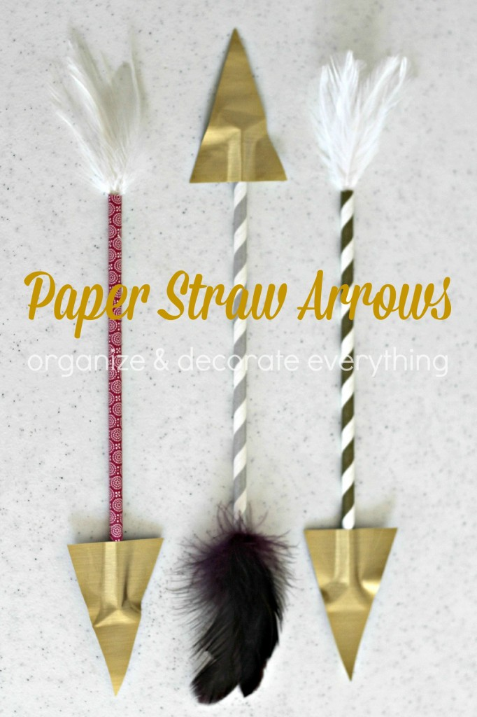 Paper Straw Arrows 3.1