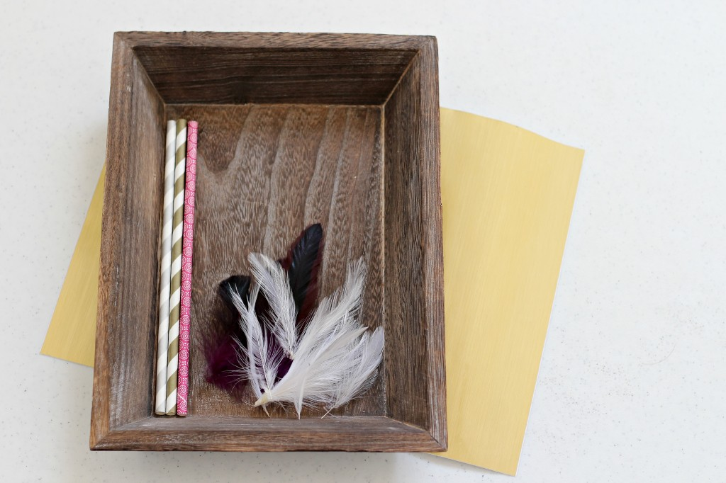 Paper Straw Arrows 9