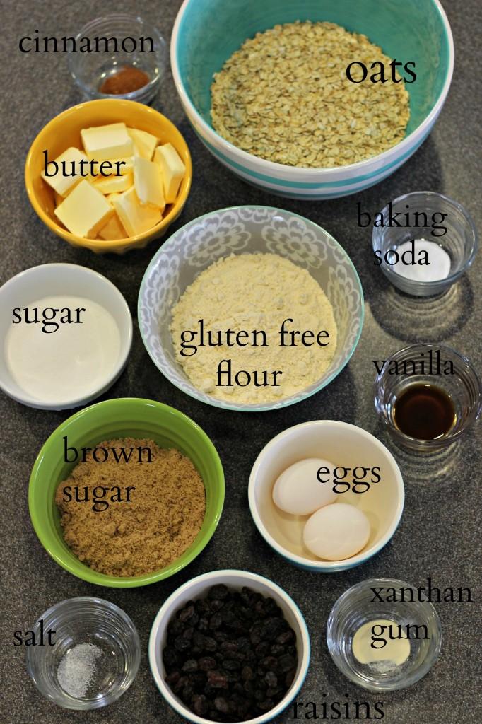 Gluten Free Oatmeal Raisin Cookies 3