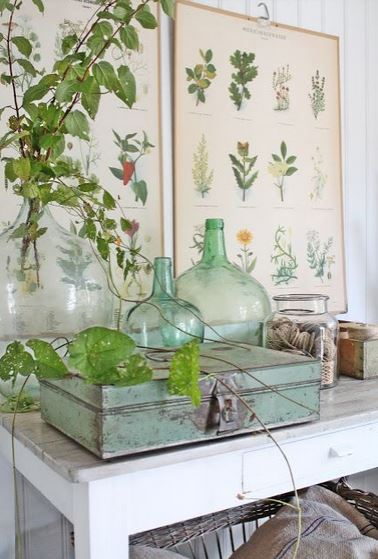 How to Decorate with FLorals - botanicals