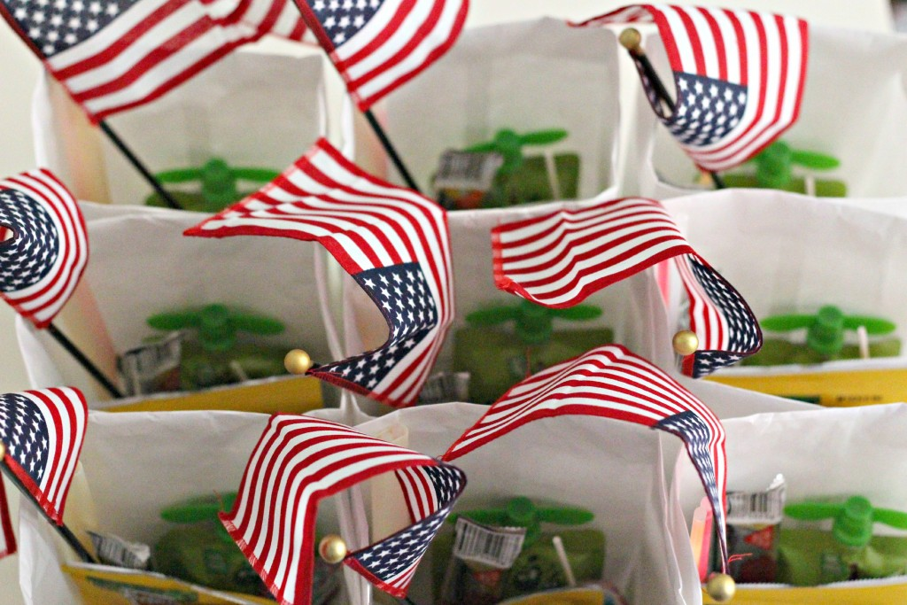4th of July Parade Bags top view.1