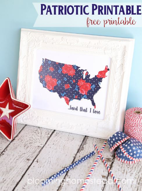 4th of July floral usa