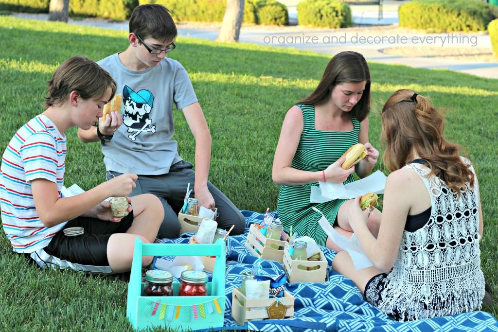 Picnic Crates picnic
