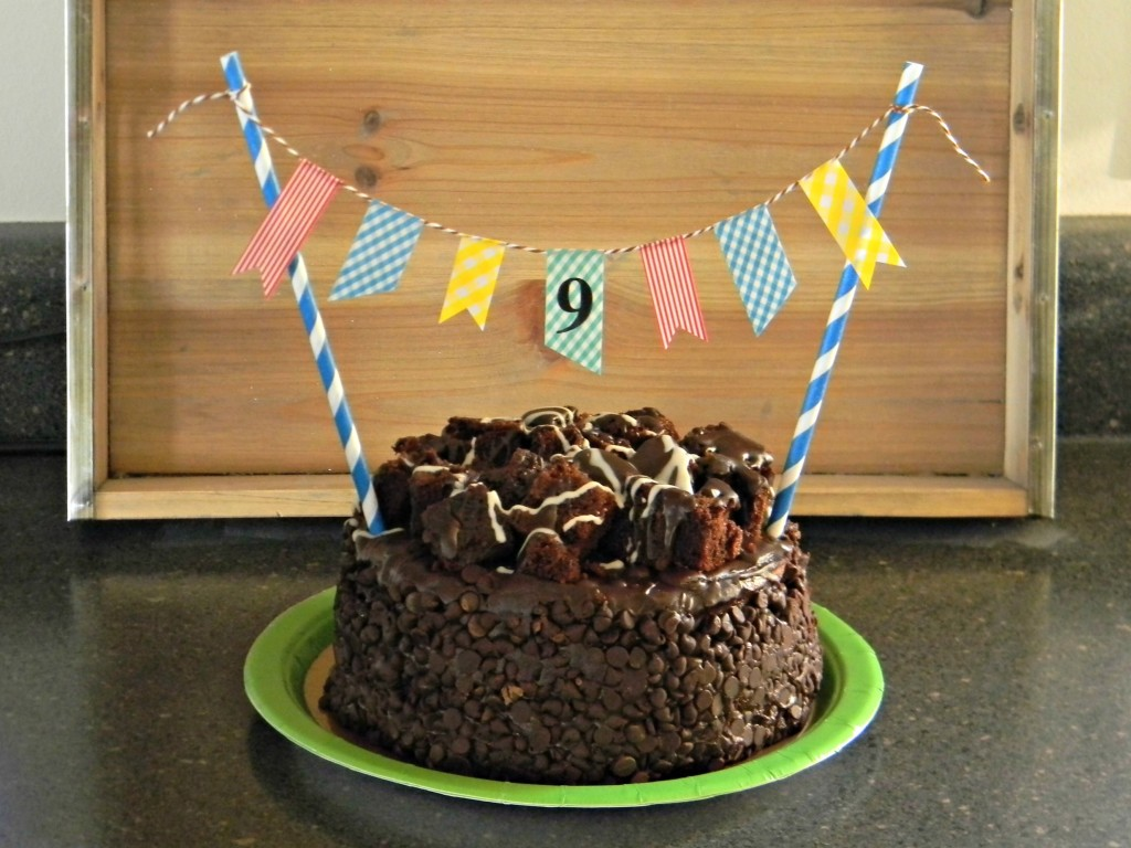 Birthday Cake Banner 5