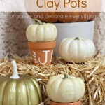 Decorative Clay Pots