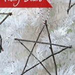 Twig Stars