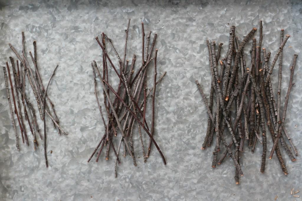 Twig Stars.2