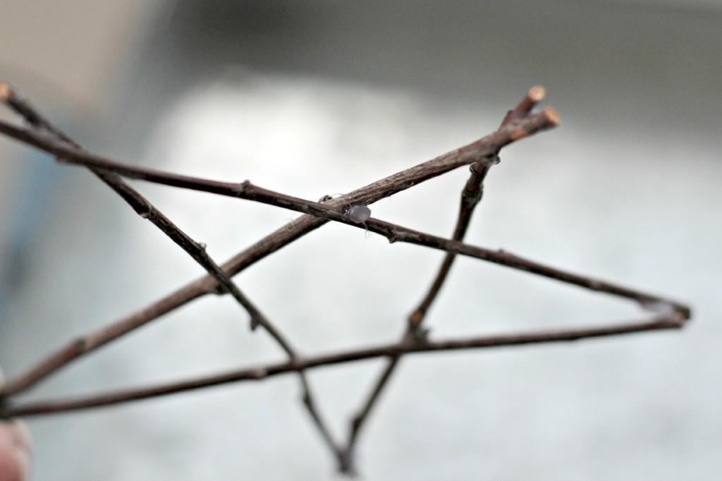 Twig Stars.4
