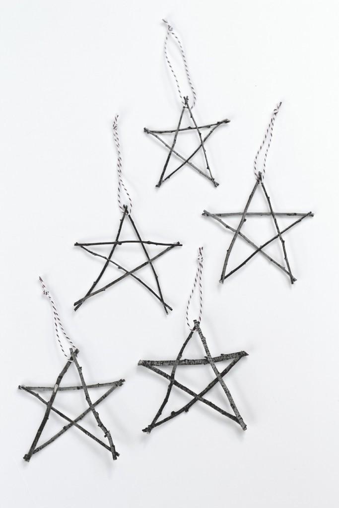 Twig Stars.6