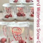 Gift Card Waterless Snow Globes