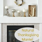 Natural Thanksgiving Mantel