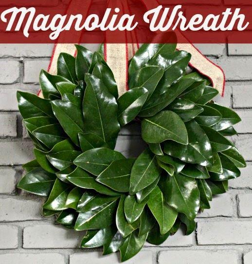 Wreath Magnolia