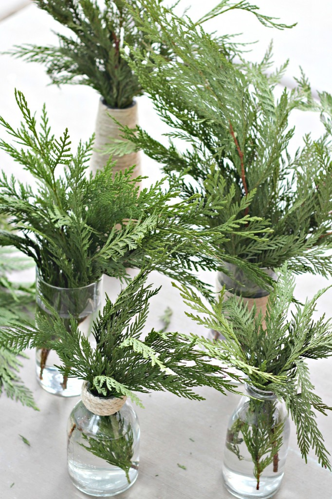 Pine Boughs arranged in clear jars