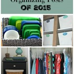 Top 10 Organizing Posts of 2015