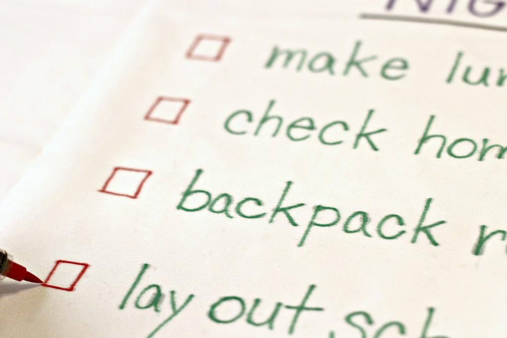 Checklist Pillowcase back