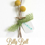 Billy Ball Place Card