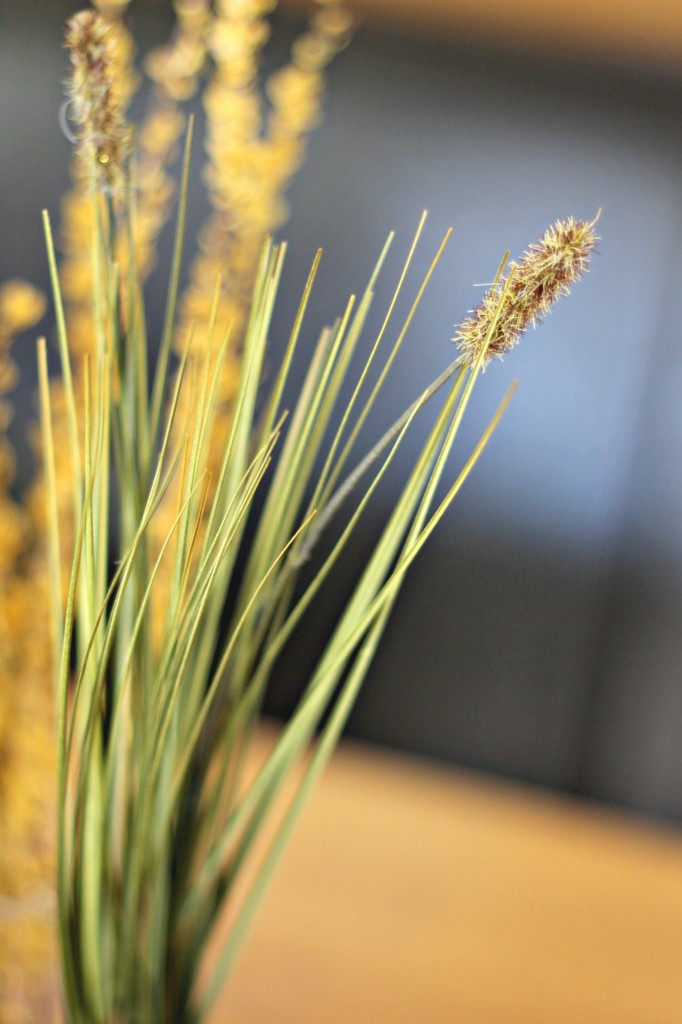 Centerpiece grasses