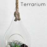 Hanging Succulent Terrarium