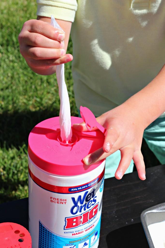Homemade Ice Cream Wet Ones