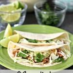 3 Ingredient Shredded Pork Tacos