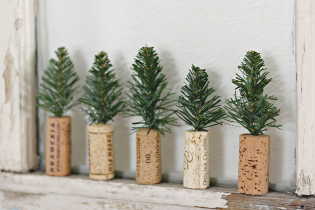 cork-pine-trees-on-old-window
