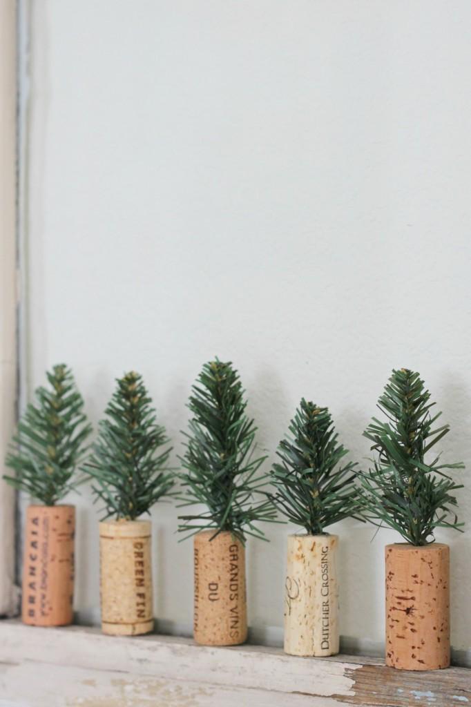 cork-trees-on-old-window