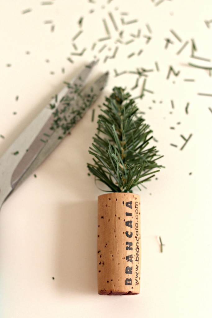 mini-cork-tree-being-trimmed