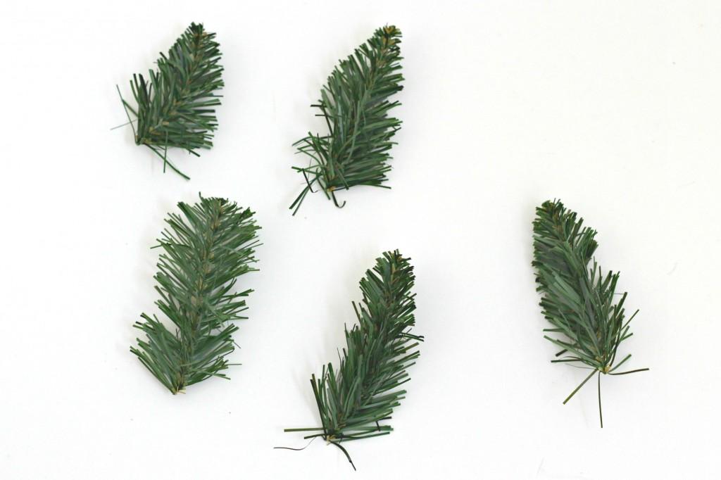mini-cork-trees-pine-needles