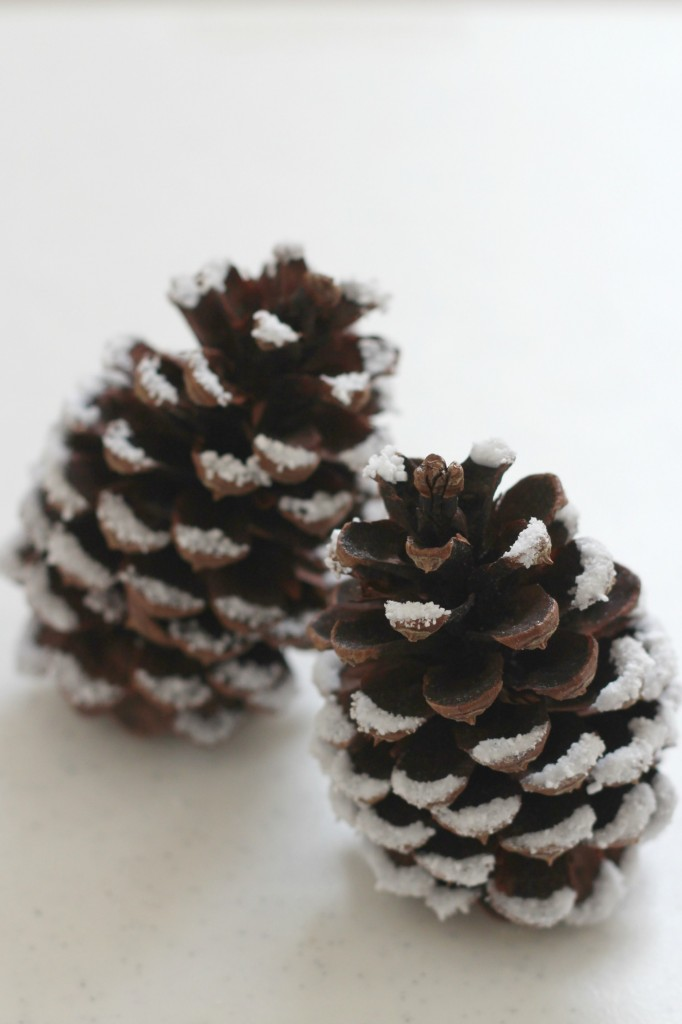 snowy-pine-cone-epsom-salt-snow